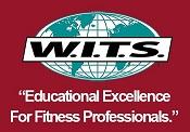 W.I.T.S logo