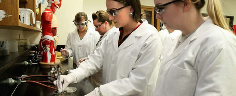 image of students working in a lab