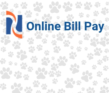 Online Bill Pay Image